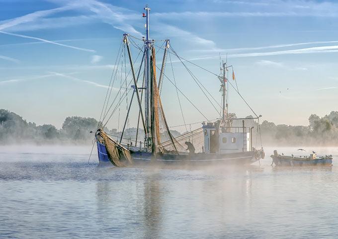 Boot am Nebelmorgen